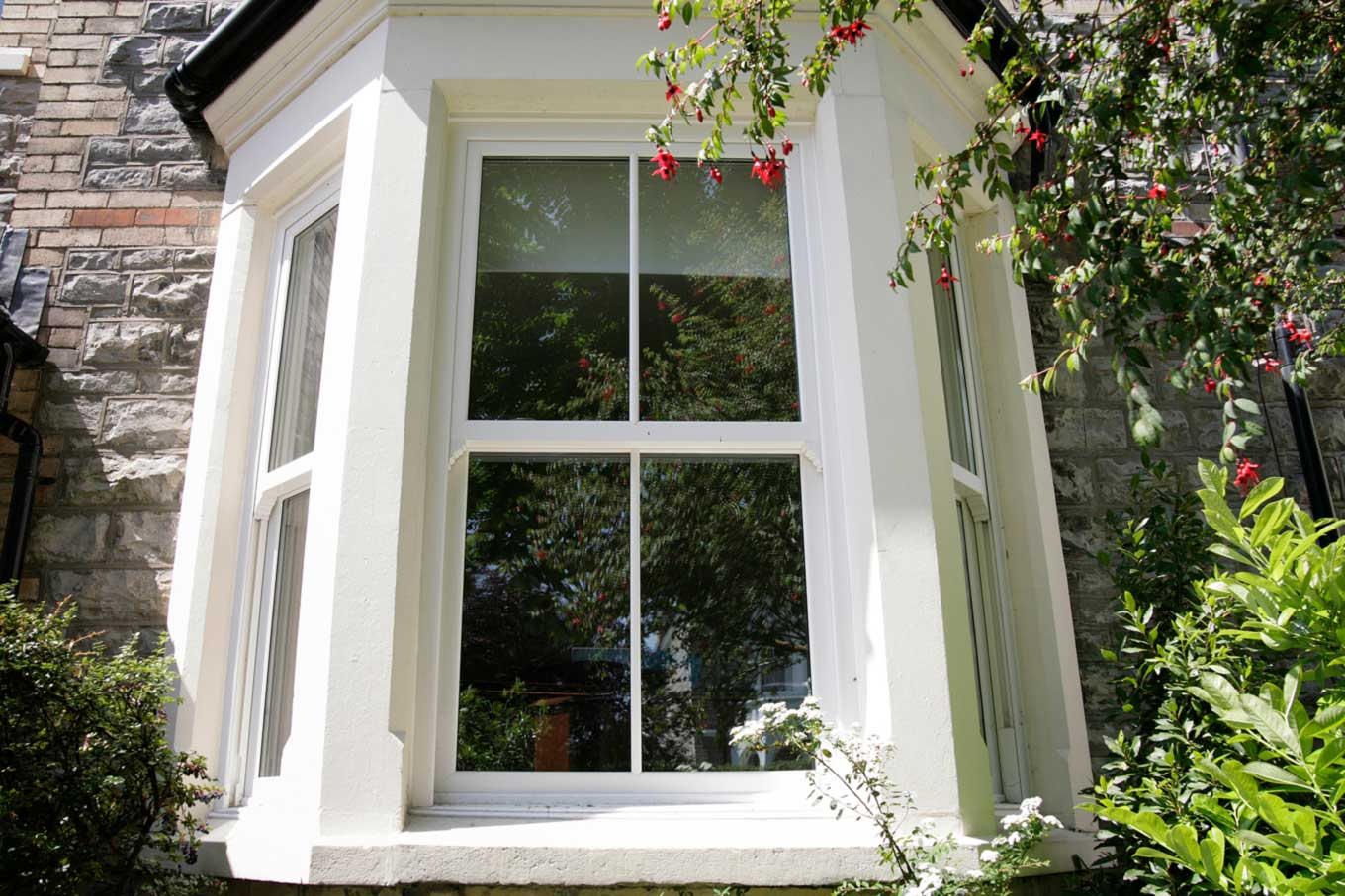 Sash Windows Projects