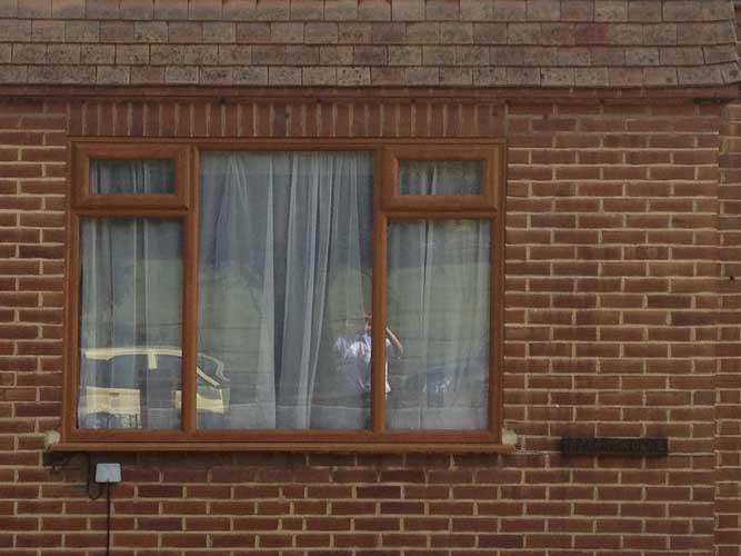 wooden windows sutton